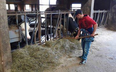Intervju z učencem o delovnem usposabljanju na kmetiji